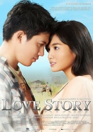 Love Story (2011)