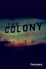 Poster The Colony 2010