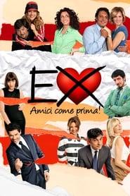 Poster Ex 2: Still Friends 2011
