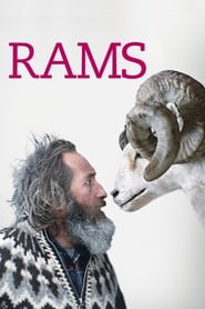 مشاهدة فيلم Rams مترجم