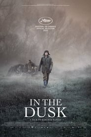 In the Dusk (2019)