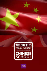 Are Our Kids Tough Enough? Chinese School 2015