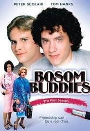 Bosom Buddies - Season 1