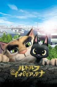 Poster Rudolf the Black Cat