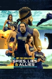 The Challenge - Spies, Lies and Allies poster