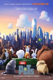 Watch Pets – Vita da animali on FilmSenzaLimiti Online