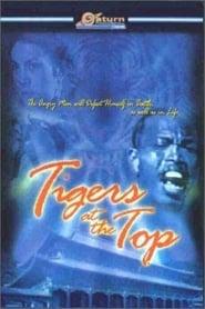 Voir La vengeance du tigre noir en streaming complet gratuit | film streaming, StreamizSeries.com