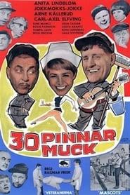 30 pinnar muck 1966