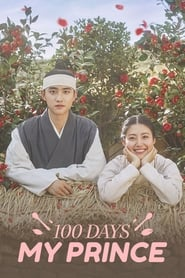 100 Days My Prince Episode 12