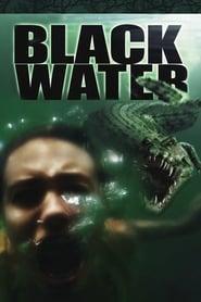 Poster Black Water 2007