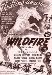 Regarder Wildfire