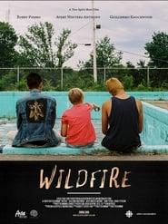 Wildfire 2019