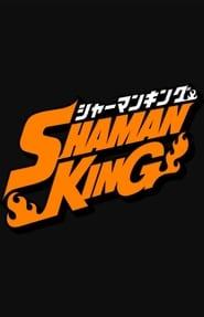 Shaman King 2001