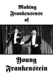 Making Frankensense of Young Frankenstein (1996)
