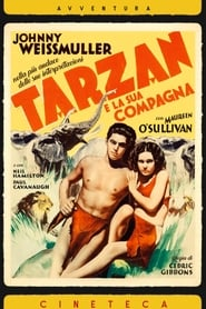 Tarzan e la compagna 1934