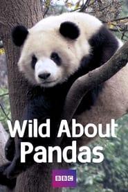 Wild About Pandas 2012