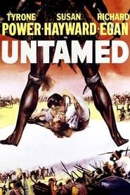 Poster Untamed 1955