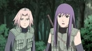 Naruto Shippūden Season 14 Episode 308 : Night of the Crescent Moon