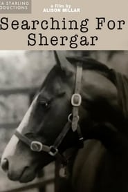 Searching For Shergar