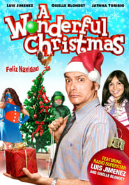 A Wonderful Christmas (2021)