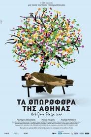 Τα οπωροφόρα της Αθήνας 2010