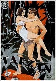 Gucke Tarzan, der Affenmensch