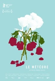 The Meteor (2013)