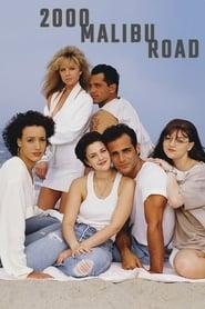 Poster 2000 Malibu Road 1992