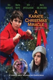 A Karate Christmas Miracle (2019)