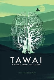 Image Tawai: A voice from the forest
