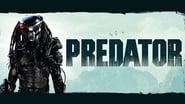 Predator images