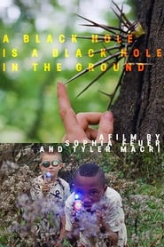 A Black Hole is a Black Hole in the Ground