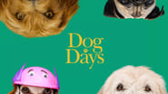 Dog Days Images