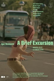 A Brief Excursion