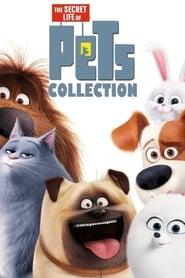 Pets: A Vida Secreta dos Bichos 2 Dublado Online