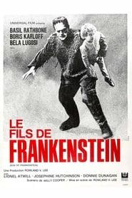 Voir Le Fils de Frankenstein en streaming complet gratuit | film streaming, StreamizSeries.com