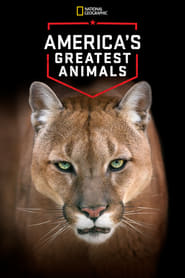 America's Greatest Animals (2012)