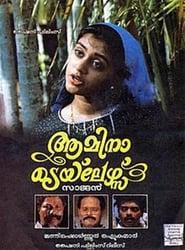 ആമിന ടെയ് ലേഴ്സ് 1991