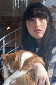 Cat's Home