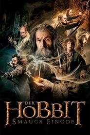 Der Hobbit – Smaugs Einöde [2013]