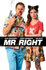 Mr. Right [2016]