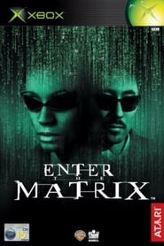 Making 'Enter the Matrix'