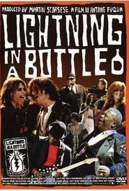 Lightning in a Bottle (2004)