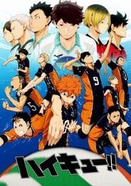 Haikyu!!: Season 1