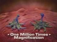 Dinosaurios 3x6