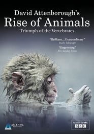Guardare David Attenborough's Rise of Animals: Triumph of the Vertebrates