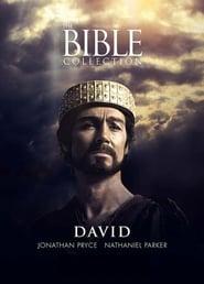 Poster David 1997