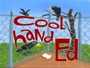 Ed, Edd y Eddy 5x8