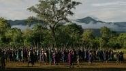 Grasslands: Roots of Power