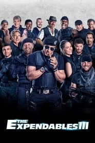 The Expendables 3: Eroi de sacrificiu (2014)